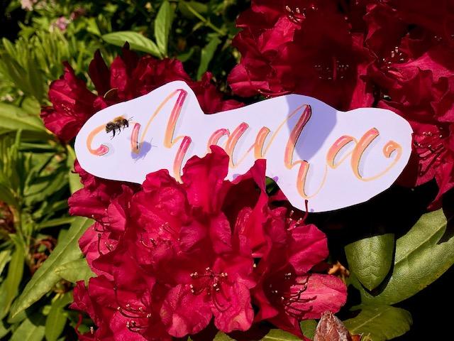 mama brush lettering - Hand lettering kurs online